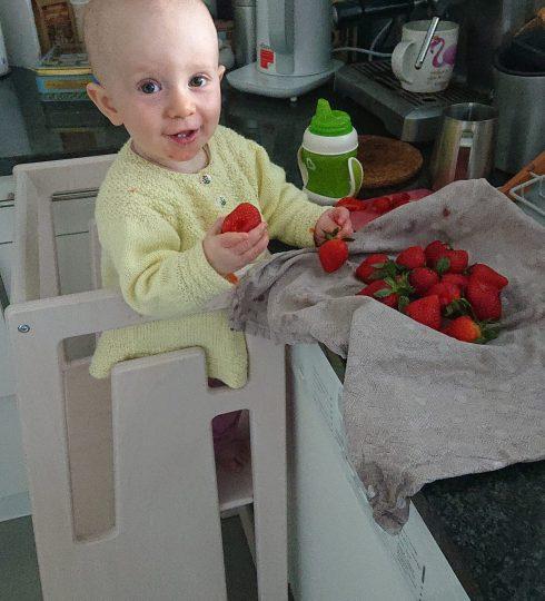 Erdbeeren Essen in Tuki Lernturm